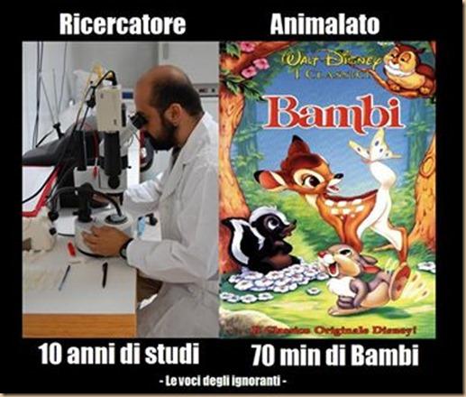ricercatore VS animalaTO