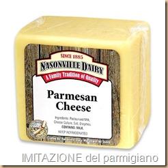 Parmesan- fake imitazione del lavoro