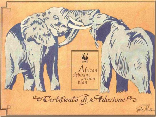 WWF Elefanti adozione